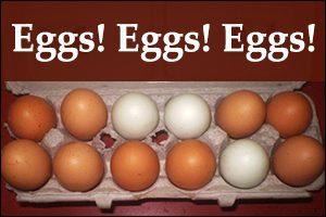 Homestead eggs