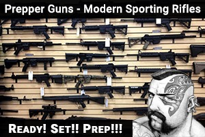 Modern Sporting Rifles