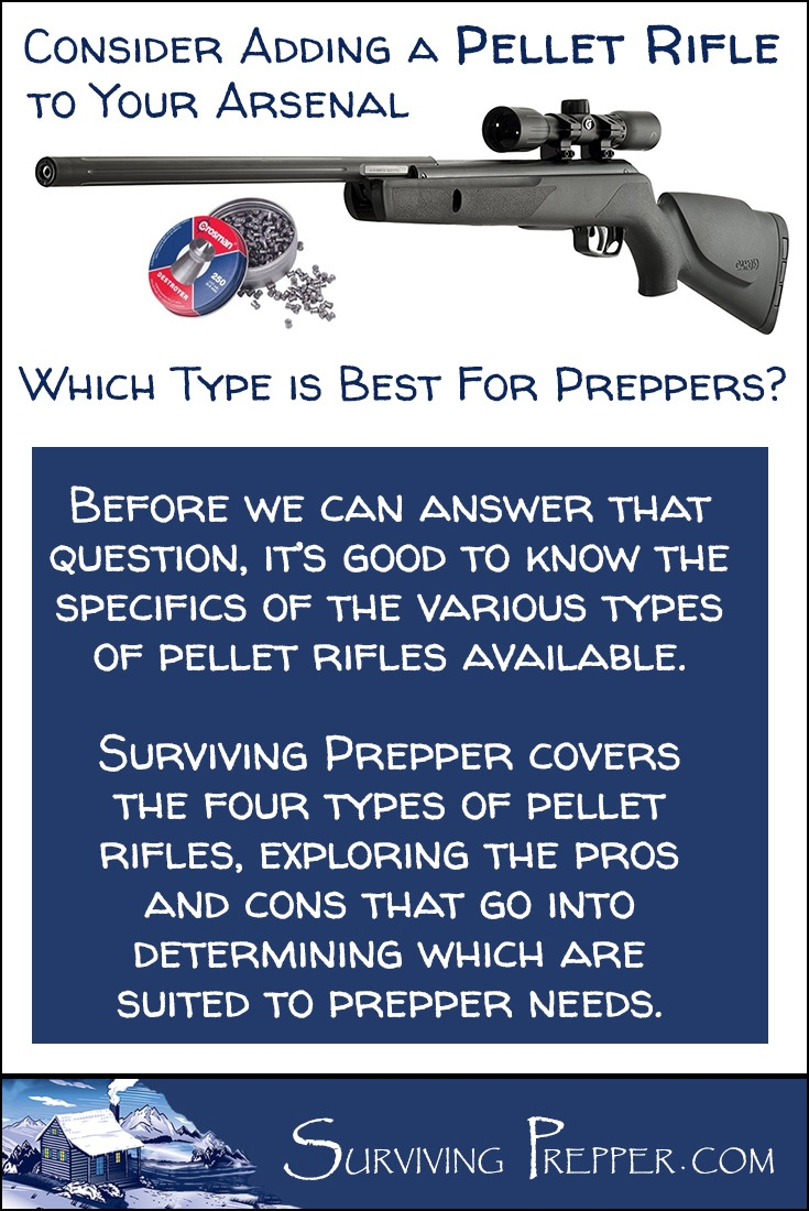 Surviving Prepper covers the four types of pellet rifles, and which type is best suited to the lifestyle and needs of preppers.