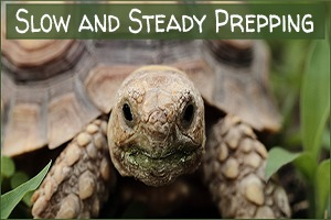 Slow and Steady Prepping