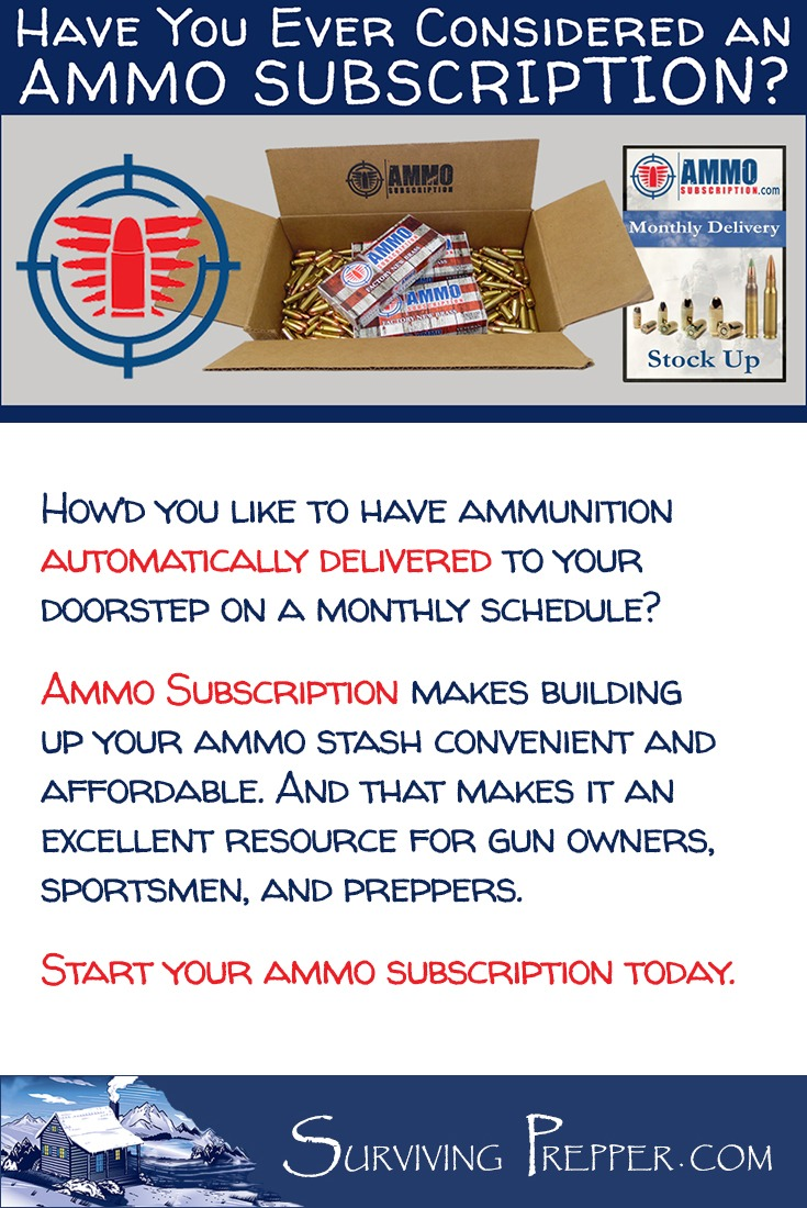 Ammo Subscription. Ammunition delivered to your doorstep. A great prepper resource! I can't think of a more useful service for us gun nuts.