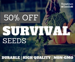 Hometown Survival Seeds