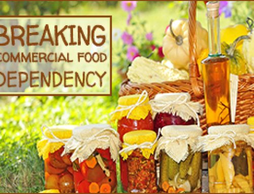 Breaking Commercial Food Dependency