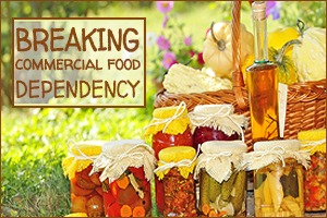 Break Commercial Food Dependency
