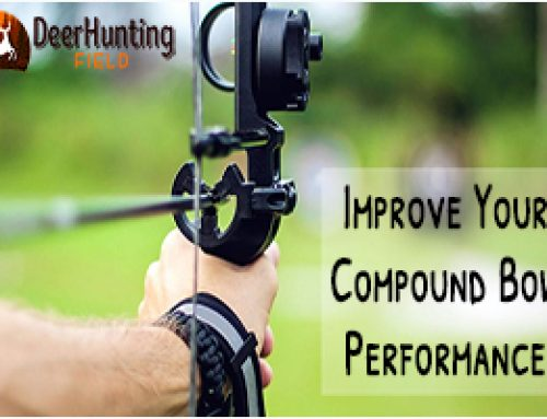 7 Tips on How to Shoot a Compound Bow Better