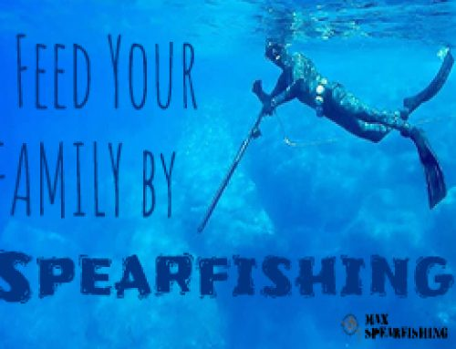 Spearfishing in the Ocean to Feed Your Family