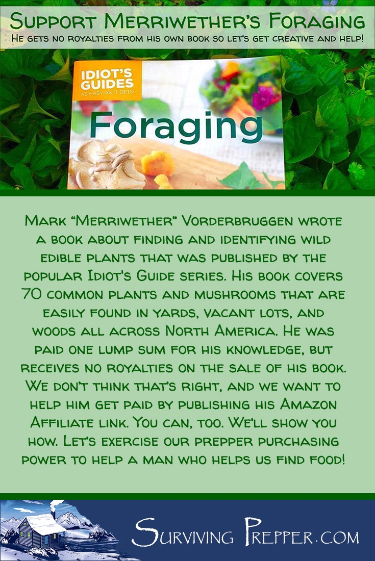 """Mark """"Merriwether"""" Vorderbruggen wrote a book identifying 70 common plants and mushrooms that are found in yards, vacant lots, and woods all across America. This man teaches people how to find wild edibles so that they can survive and feed their families. But his deal with his publisher says that he doesn't get any royalties. I want to support him, so we are getting creative in finding a way to help him get paid. You can help, too. I'll show you how."""