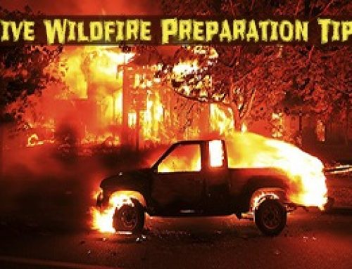 5 Wildfire Survival Preparation Tips