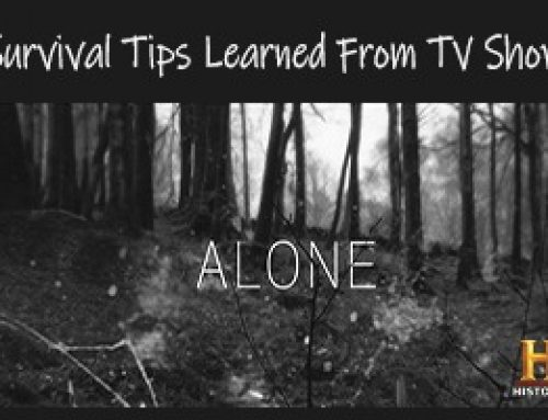 Survival Strategies Learned From History Channel Alone